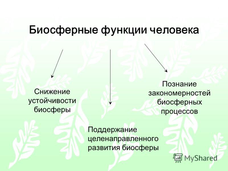 Биосферные функции человека Снижение устойчивости биосферы Познание закономерностей биосферных процессов Поддержание целенаправленного развития биосферы