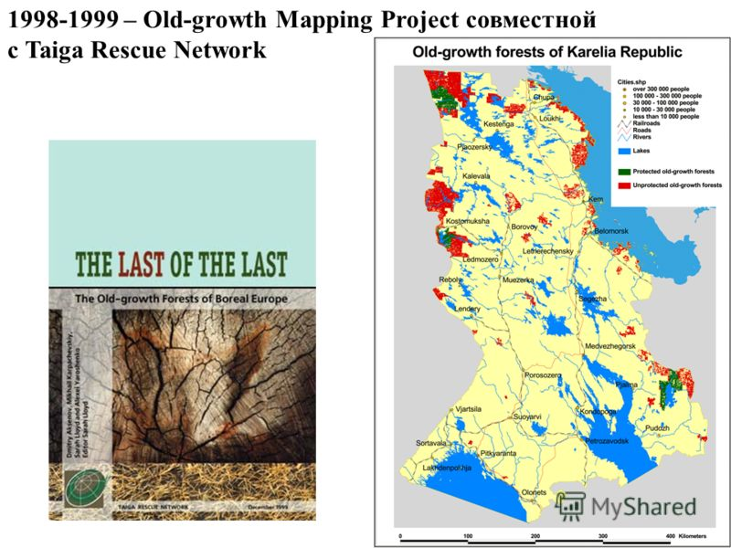 1998-1999 – Old-growth Mapping Project совместной с Taiga Rescue Network