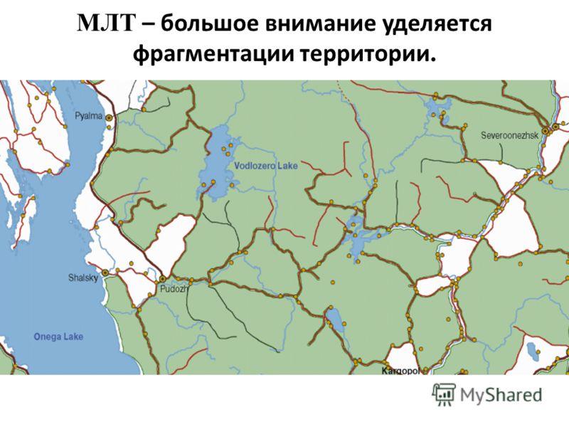 МЛТ – большое внимание уделяется фрагментации территории.