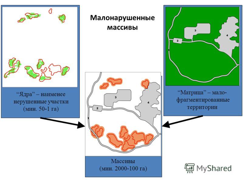 Малонарушенные массивы Ядра – наименее нерушенные участки (мин. 50-1 га) Матрица – мало- фрагментированные территории Массивы (мин. 2000-100 га)
