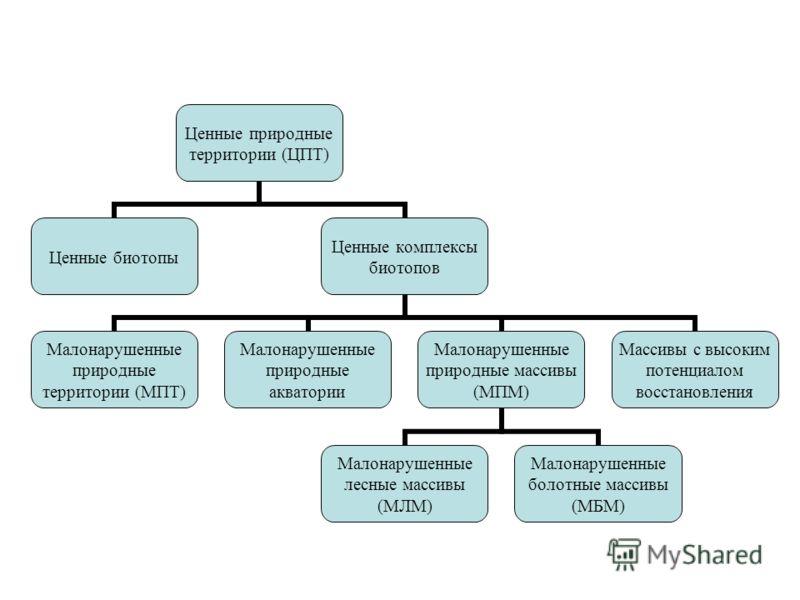 Ценные природные территории (ЦПТ) Ценные биотопы Ценные комплексы биотопов Малонарушенные природные территории (МПТ) Малонарушенные природные акватории Малонарушенные природные массивы (МПМ) Малонарушенные лесные массивы (МЛМ) Малонарушенные болотные