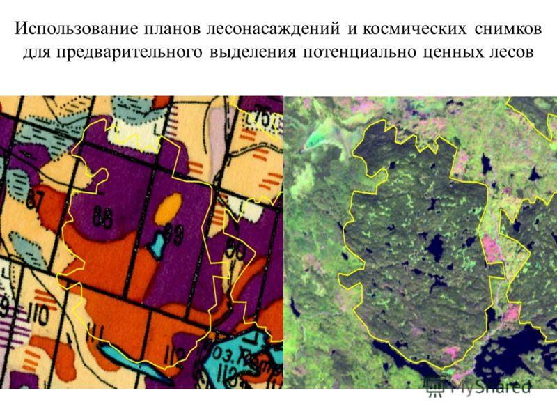 Использование планов лесонасаждений и космических снимков для предварительного выделения потенциально ценных лесов