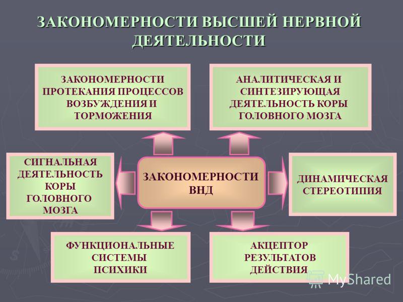 ЗАКОНОМЕРНОСТИ ВЫСШЕЙ НЕРВНОЙ ДЕЯТЕЛЬНОСТИ ЗАКОНОМЕРНОСТИ ПРОТЕКАНИЯ ПРОЦЕССОВ ВОЗБУЖДЕНИЯ И ТОРМОЖЕНИЯ ЗАКОНОМЕРНОСТИ ПРОТЕКАНИЯ ПРОЦЕССОВ ВОЗБУЖДЕНИЯ И ТОРМОЖЕНИЯ ДИНАМИЧЕСКАЯ СТЕРЕОТИПИЯ ФУНКЦИОНАЛЬНЫЕ СИСТЕМЫ ПСИХИКИ АКЦЕПТОР РЕЗУЛЬТАТОВ ДЕЙСТВИЯ
