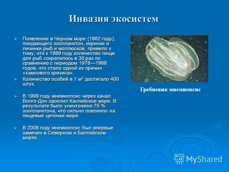 Инвазия экосистем Появление в Черном море (1982 году), поедающего зоопланктон, икринки и личинки рыб и моллюсков, привело к тому, что к 1989 году количество пищи для рыб сократилось в 30 раз по сравнению с периодом 19781988 годов, что стало одной из