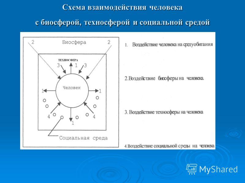 Схема взаимодействия человека с биосферой, техносферой и социальной средой