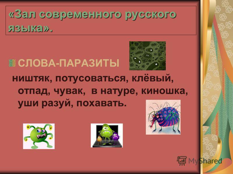 «Зал современного русского языка». СЛОВА-ПАРАЗИТЫ ништяк, потусоваться, клёвый, отпад, чувак, в натуре, киношка, уши разуй, похавать.