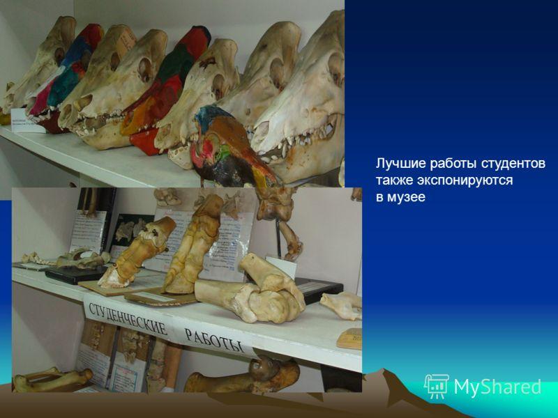 Лучшие работы студентов также экспонируются в музее