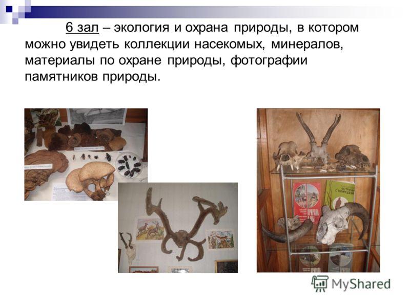 6 зал – экология и охрана природы, в котором можно увидеть коллекции насекомых, минералов, материалы по охране природы, фотографии памятников природы.