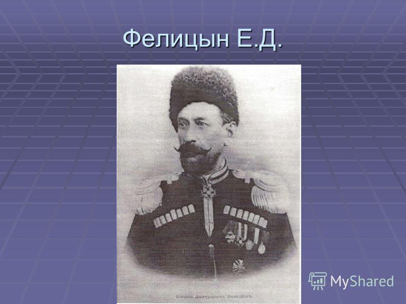 Фелицын Е.Д.
