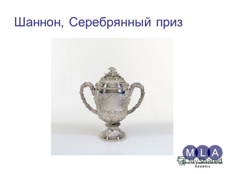Шаннон, Серебрянный приз