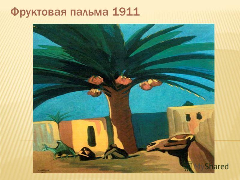 Фруктовая пальма 1911