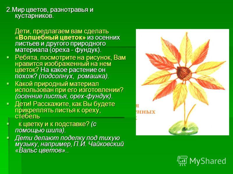 2.Мир цветов, разнотравья и кустарников. Дети, предлагаем вам сделать «Волшебный цветок» из осенних листьев и другого природного материала (ореха - фундук). Ребята, посмотрите на рисунок, Вам нравится изображенный на нем цветок? На какое растение он