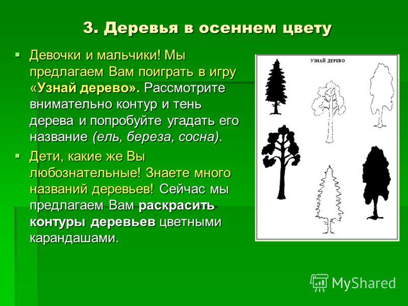 3. Деревья в осеннем цвету Девочки и мальчики! Мы предлагаем Вам поиграть в игру «Узнай дерево». Рассмотрите внимательно контур и тень дерева и попробуйте угадать его название (ель, береза, сосна). Девочки и мальчики! Мы предлагаем Вам поиграть в игр