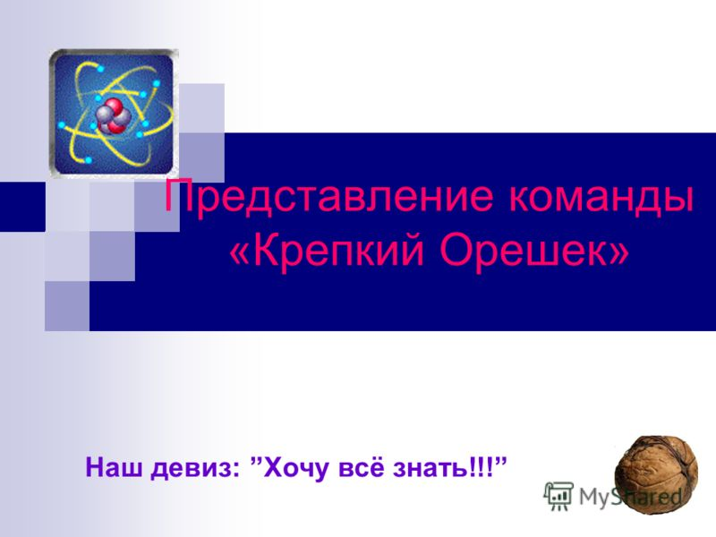 Представление команды «Крепкий Орешек» Наш девиз: Хочу всё знать!!!