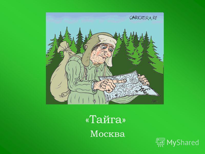 «Тайга» Москва