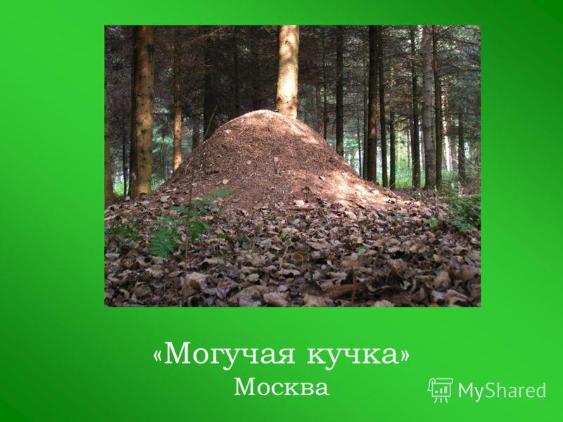 «Могучая кучка» Москва