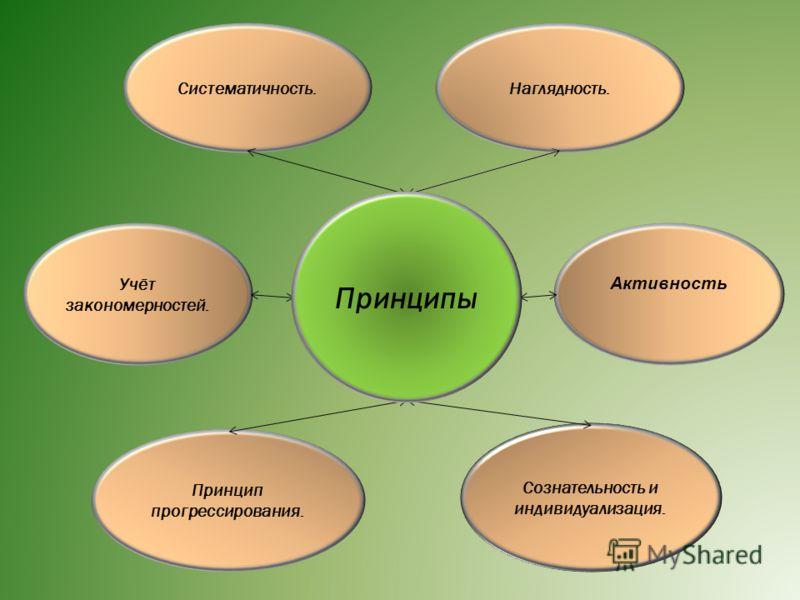 Наглядность. Сознательность и индивидуализация. Активность Систематичность. Учёт закономерностей. Принцип прогрессирования. Принципы
