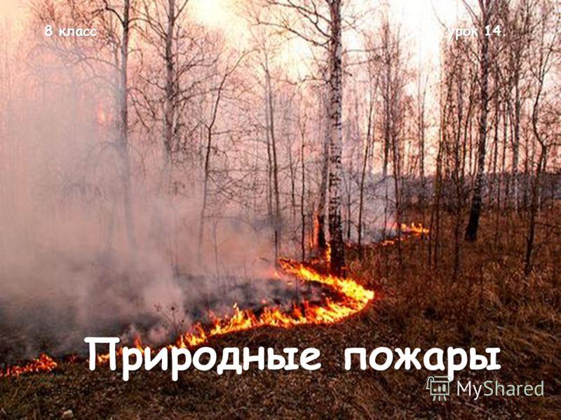 8 класс урок 14. Природные пожары 10.06.20131