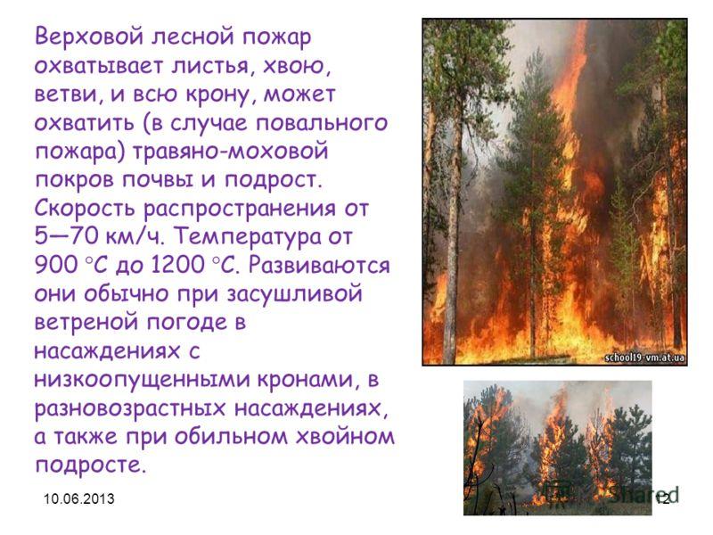 Верховой лесной пожар охватывает листья, хвою, ветви, и всю крону, может охватить (в случае повального пожара) травяно-моховой покров почвы и подрост. Скорость распространения от 570 км/ч. Температура от 900 °C до 1200 °C. Развиваются они обычно при