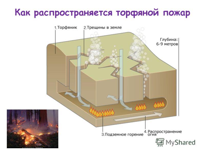 Как распространяется торфяной пожар