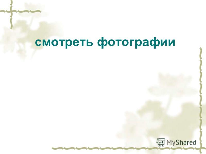 смотреть фотографии