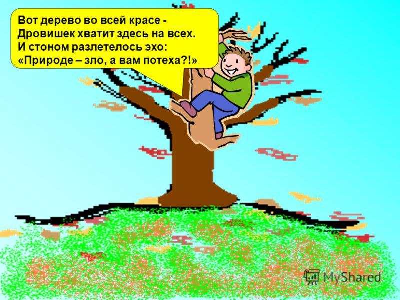 Вот дерево во всей красе - Дровишек хватит здесь на всех. И стоном разлетелось эхо: «Природе – зло, а вам потеха?!»
