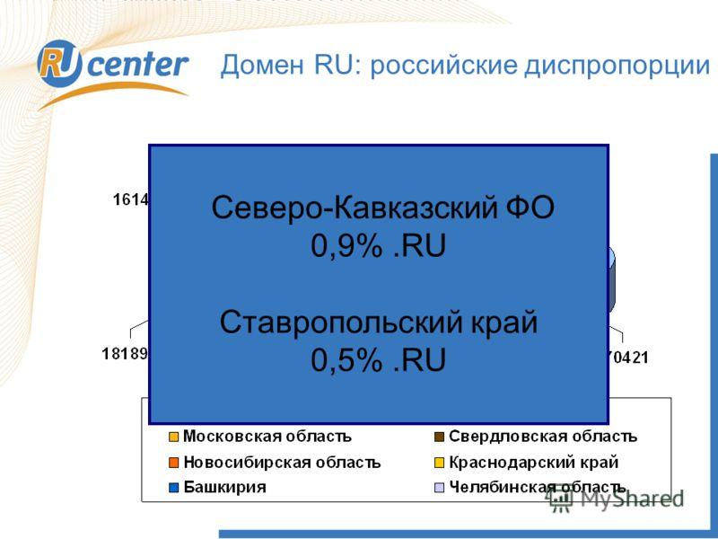 7 Домен RU: российские диспропорции 2007 2009 Северо-Кавказский ФО 0,9%.RU Ставропольский край 0,5%.RU