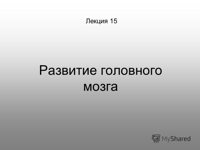 Лекция 15 Развитие головного мозга