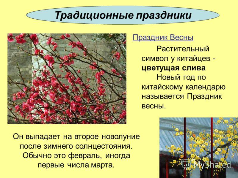 Праздник Весны Растительный символ у китайцев - цветущая слива Новый год по китайскому календарю называется Праздник весны. Традиционные праздники Он выпадает на второе новолуние после зимнего солнцестояния. Обычно это февраль, иногда первые числа ма