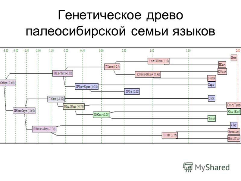 Генетическое древо палеосибирской семьи языков