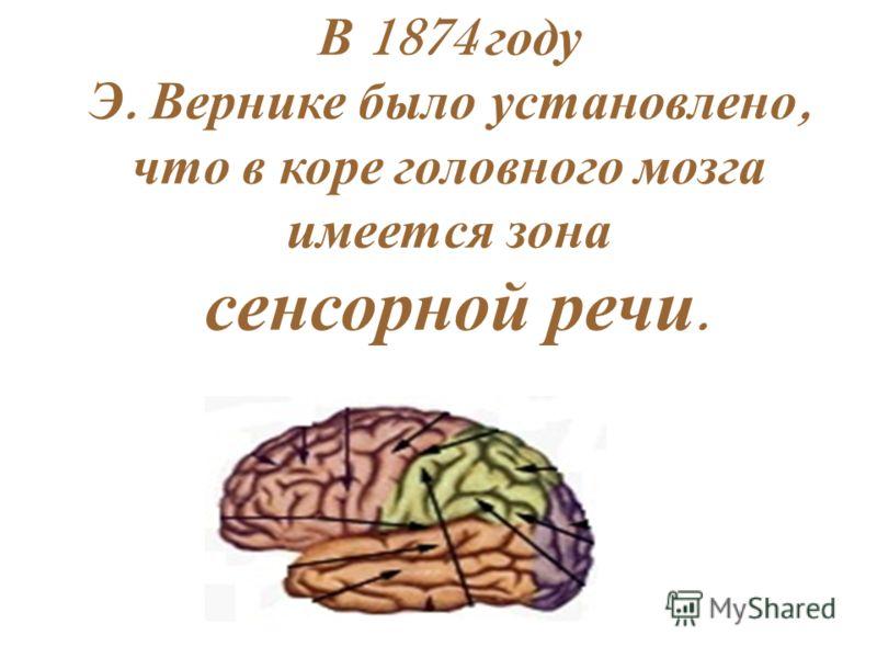 В 1874 году Э. Вернике было установлено, что в коре головного мозга имеется зона сенсорной речи.