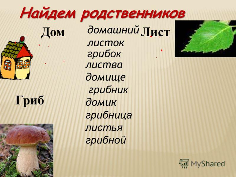 Найдем родственников ДомЛист Гриб домашний листок грибок листва домище г рибник домик грибница листья грибной
