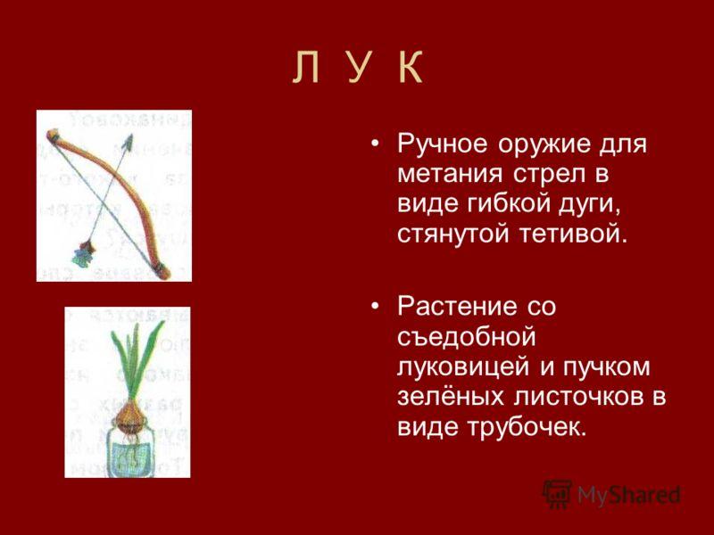 Л У К Ручное оружие для метания стрел в виде гибкой дуги, стянутой тетивой. Растение со съедобной луковицей и пучком зелёных листочков в виде трубочек.