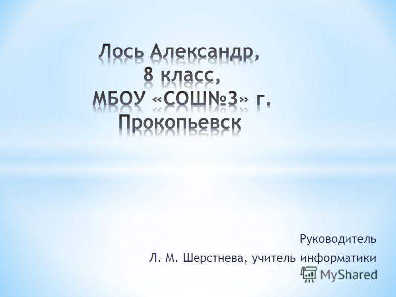 Руководитель Л. М. Шерстнева, учитель информатики