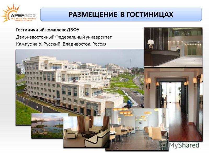 Вакансии на кампусе двфу владивосток