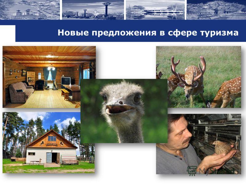 Новые предложения в сфере туризма