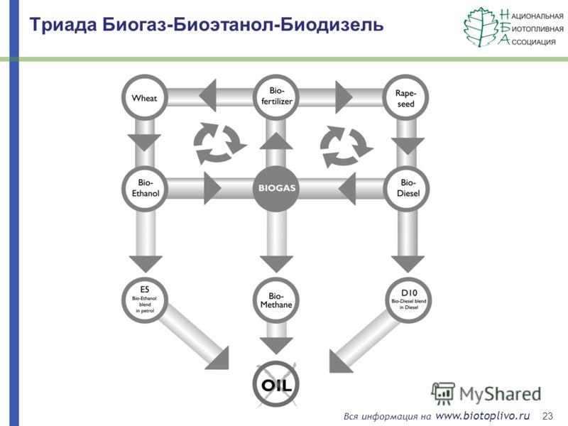 23 Вся информация на www.biotoplivo.ru Триада Биогаз-Биоэтанол-Биодизель