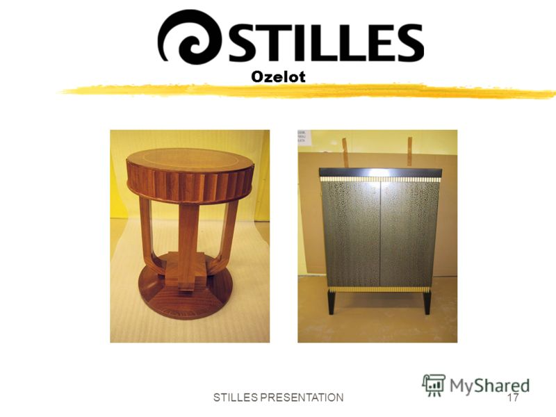 STILLES PRESENTATION17 Ozelot