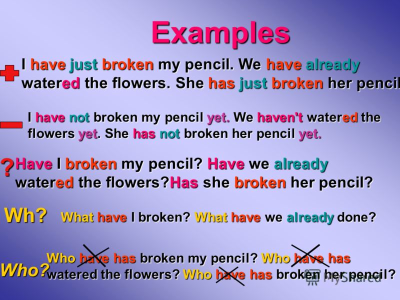 Examples ? Wh? Who? I have just broken my pencil. We have already watered the flowers. She has just broken her pencil. I have not broken my pencil yet. We haven't watered the flowers yet. She has not broken her pencil yet. Have I broken my pencil? Ha