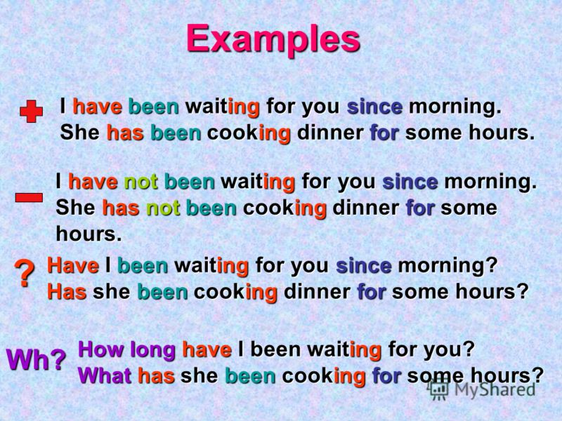 Examples ? Wh? I have been waiting for you since morning. She has been cooking dinner for some hours. I have not been waiting for you since morning. She has not been cooking dinner for some hours. Have I been waiting for you since morning? Has she be