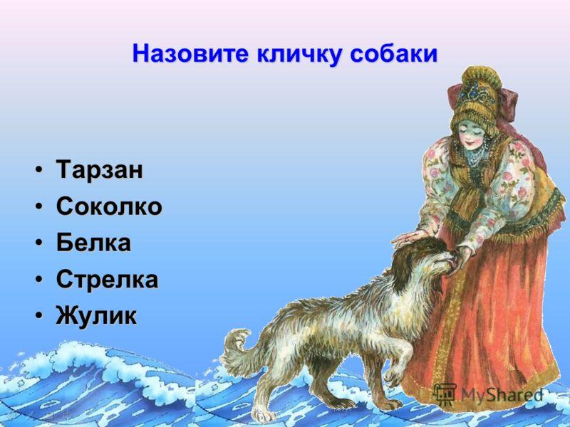 Назовите кличку собаки ТарзанТарзан СоколкоСоколко БелкаБелка СтрелкаСтрелка ЖуликЖулик