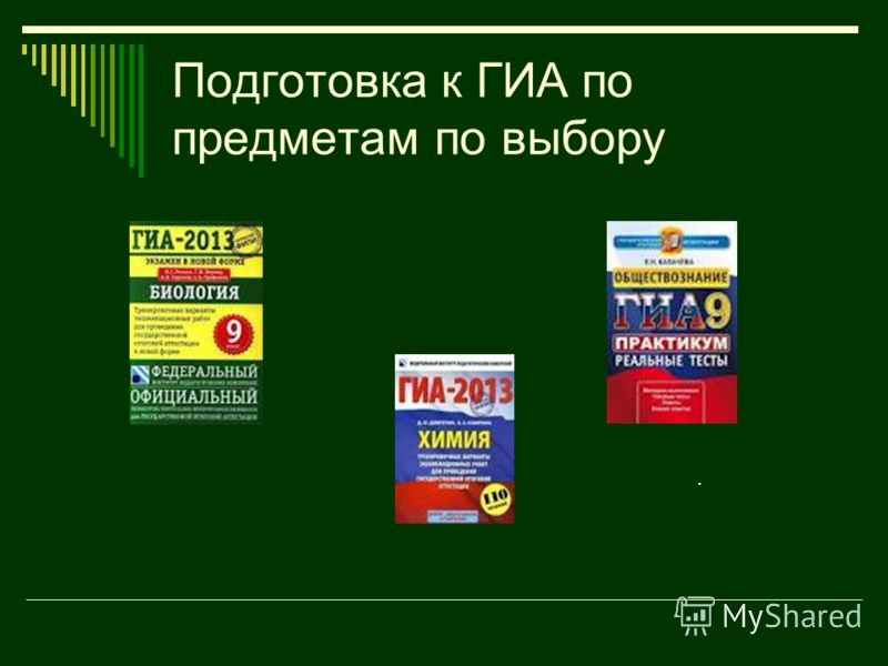 Подготовка к ГИА по предметам по выбору.