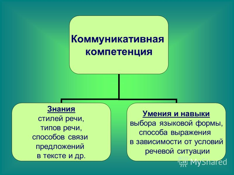Коммуникативная компетенция Знания стилей речи, типов речи, способов связи предложений в тексте и др. Умения и навыки выбора языковой формы, способа выражения в зависимости от условий речевой ситуации