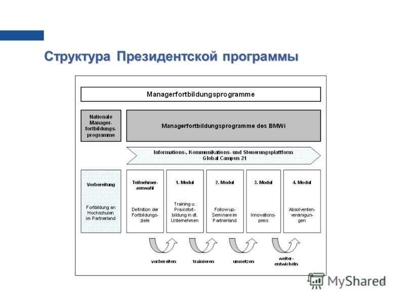 12 Структура Президентской программы