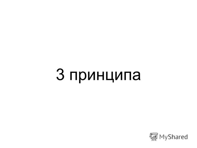 3 принципа