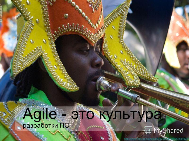 Agile - это культура разработки ПО http://www.flickr.com/photos/8363028@N08/3546340983/