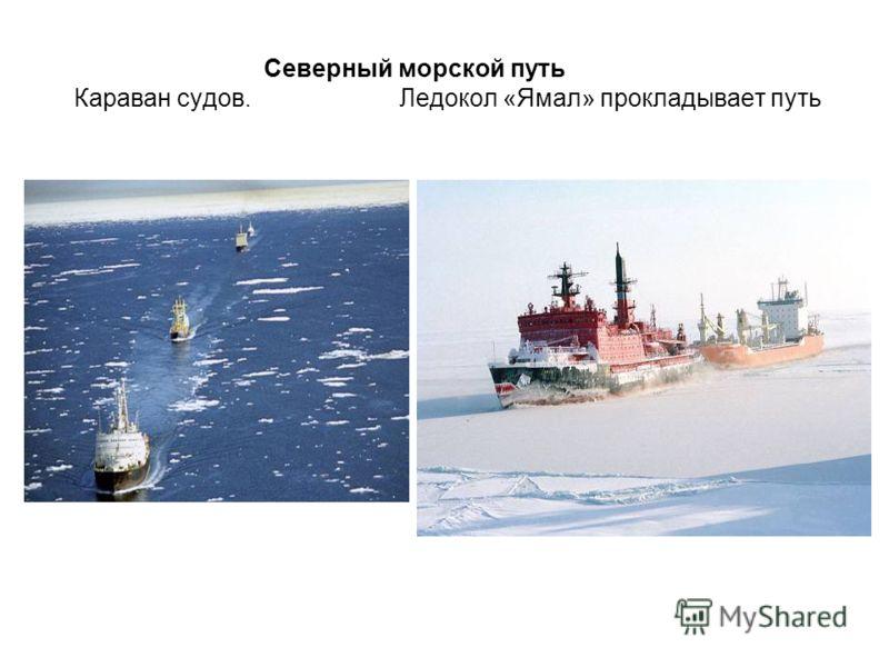 Северный морской путь Караван судов. Ледокол «Ямал» прокладывает путь
