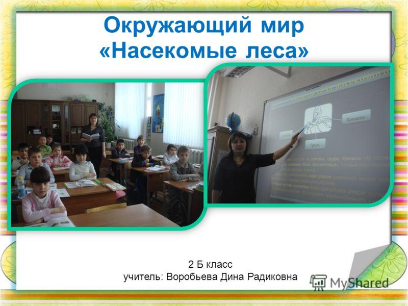 Окружающий мир «Насекомые леса» 2 Б класс учитель: Воробьева Дина Радиковна