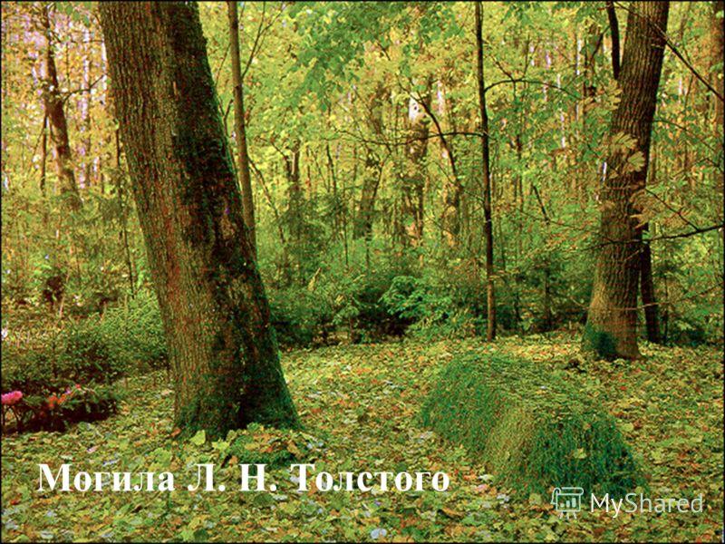 Могила Л. Н. Толстого