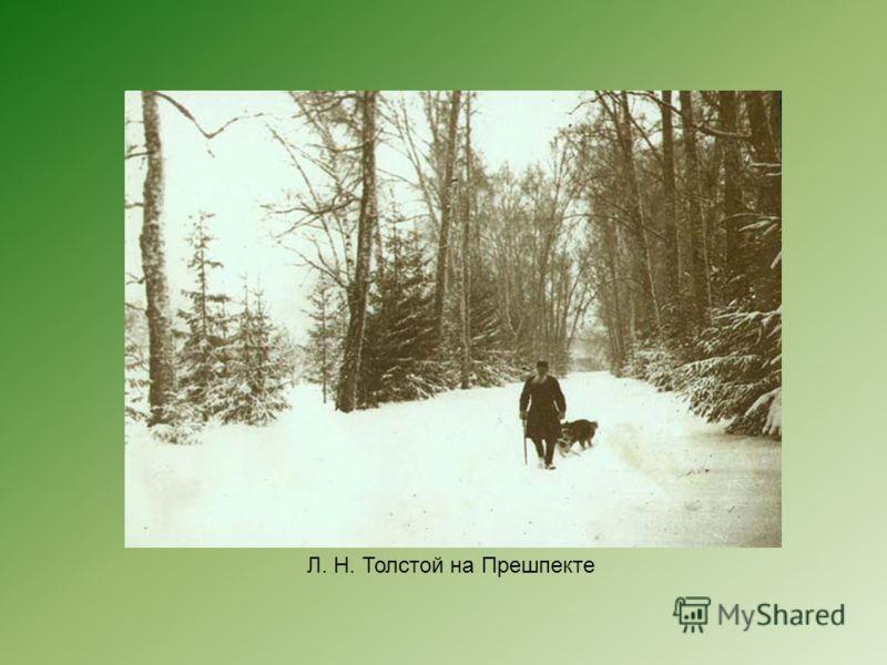 Л. Н. Толстой на Прешпекте